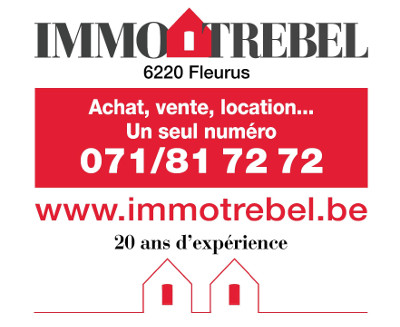 logo immotrebel
